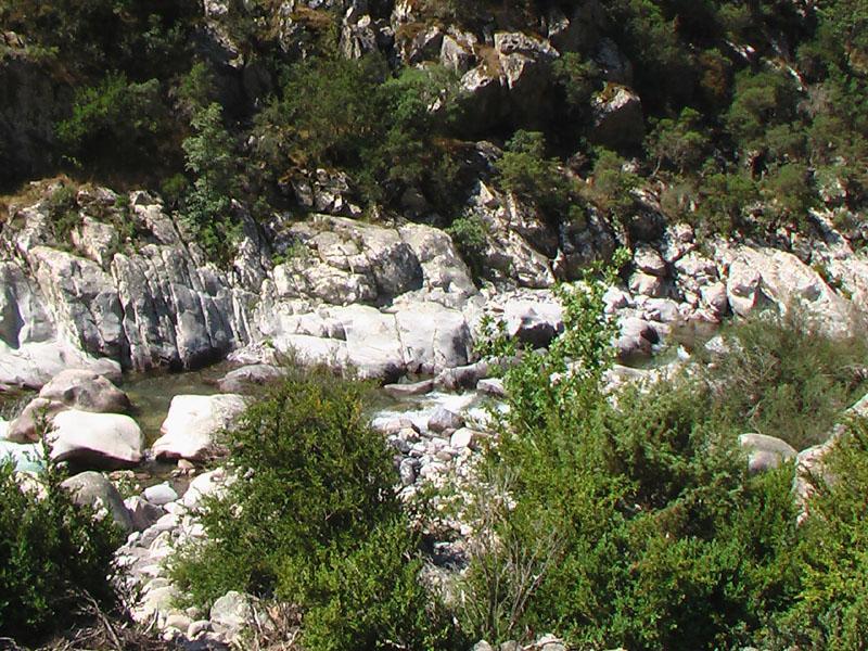 Corse2005_08s